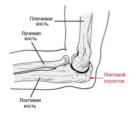 2 перелом и вывих локтивого сустава тендиноз коленного сустава симптомы